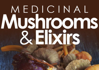 MEDICINAL MUSHROOMS WORKSHOP